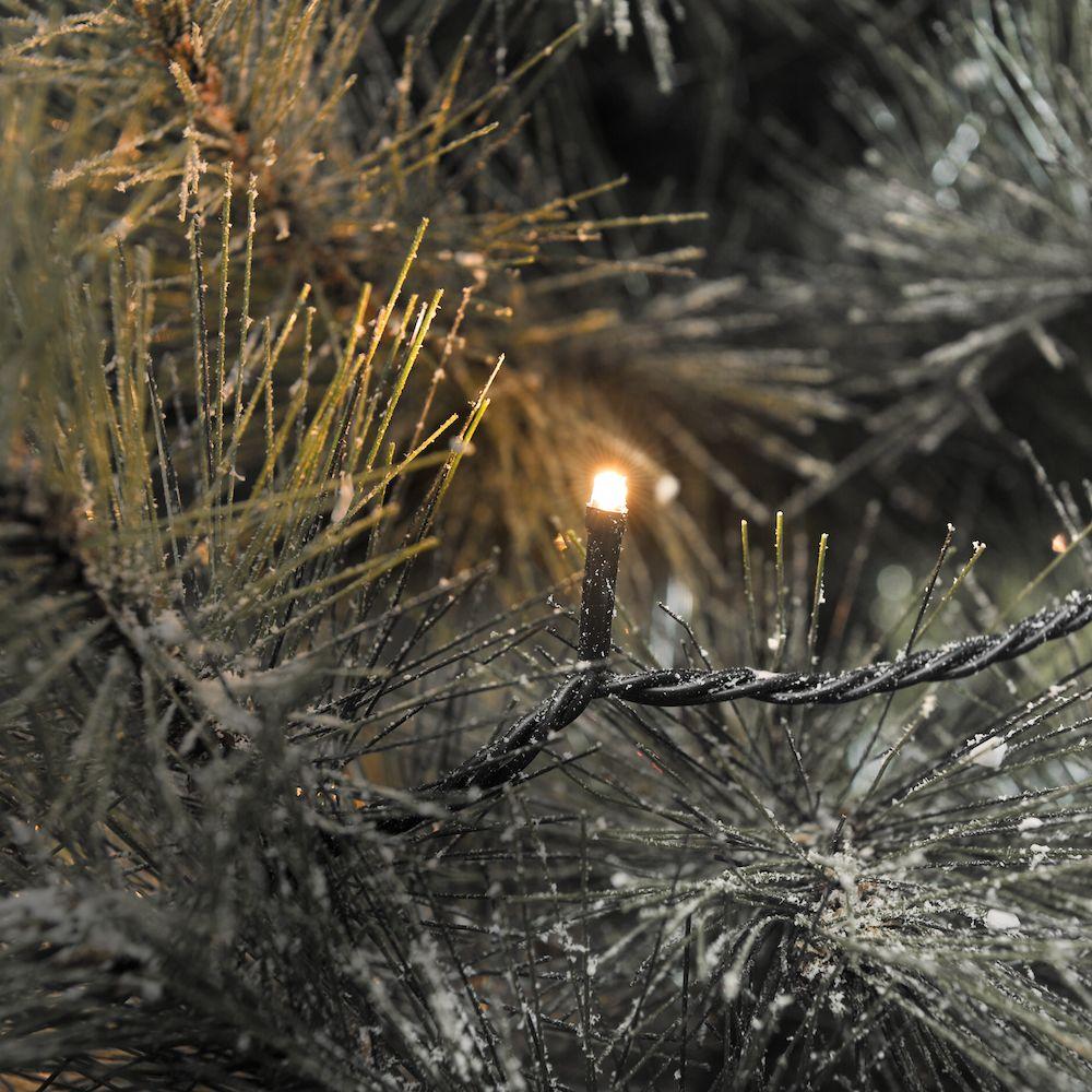 Weihnachtsbeleuchtung Außen Für Große Bäume.Led Lichterkette App Gesteu